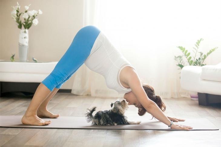 гимнастика йога для беременных